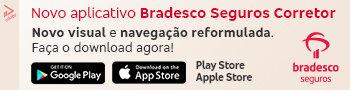 BRADESCO PEQUENO JANEIRO
